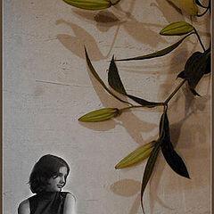 "photo ""Painting on silk..."""
