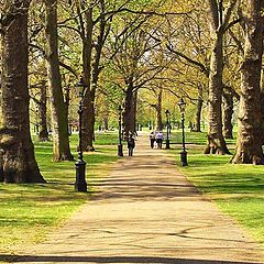 "фото ""Springtime in Green Park"""