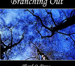"фото ""Branching out"""