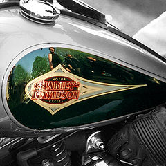"photo ""Harley-Davidson"""