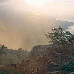 """фото """"Рассвет над ЮБК"""""""