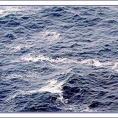 "фото ""fisherman blues"""