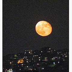 """фото """"Луна или Верный спутник"""""""