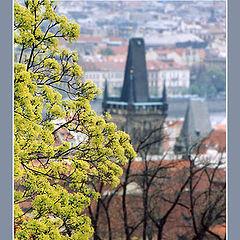 """фото """"Прага. Весна."""""""