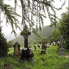 """фото """"Green#3(Моя Ирландия)"""""""