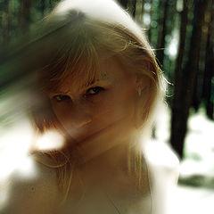 "photo ""... A wood, sun, ветерок-so gently embrace..."""