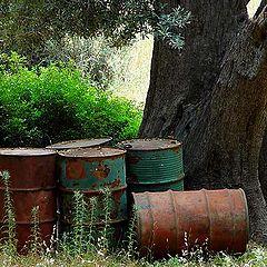 """фото """"Barrels"""""""