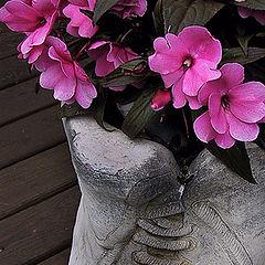 """photo """"Flowers in shooes"""""""