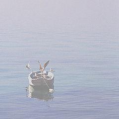 """фото """"Сквозь утренний туман"""""""