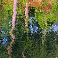 "фото ""Evening Reflections"""