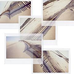 "photo ""Instant Fences"""
