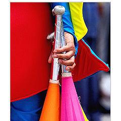"""фото """"Circus"""""""