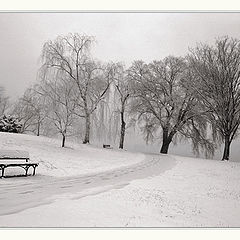 """photo """"Past and Present (Winter)"""""""