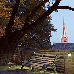 "фото ""Ночная осень"""