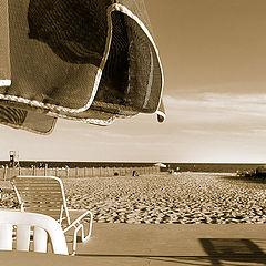 """фото """"dream summer"""""""
