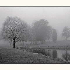"""photo """"Past and Present (Foggy Morning)"""""""
