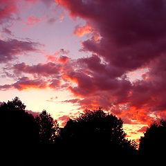"""фото """"#03 """"Sunsets"""" Album"""""""