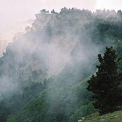 "фото ""Тумано-тучи на склонах Ай-Пэтри"""