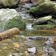 "фото ""#3 ""Small Creeks"" Album"""