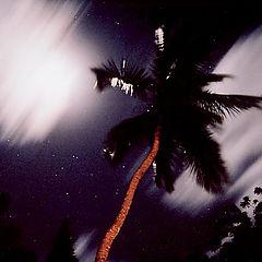 """фото """"Экваториальная ночь"""""""