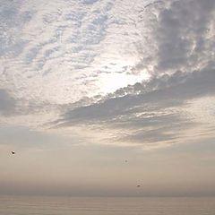 """фото """"... мне бы в небо ..."""""""