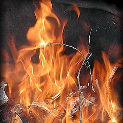 "photo ""flame"""
