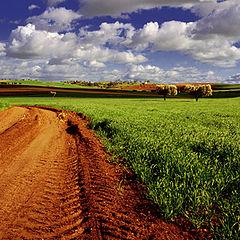 "фото ""Spring daybreak - Alentejo, Portugal"""