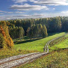 "photo ""Field road"""