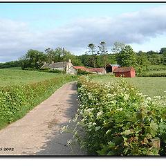 """фото """"A Farm in County Tyrone"""""""