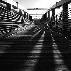 "фото ""The bridge of lines"""