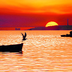 "photo ""Sunset - Alcochete - Portugal"""