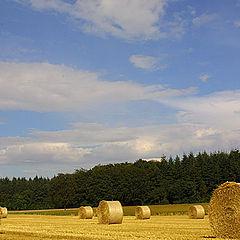 "фото ""country side"""