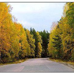 """фото """"Осенний поворот."""""""