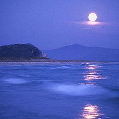 """фото """"В лунном свете"""""""