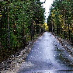 """photo """"The road..."""""""