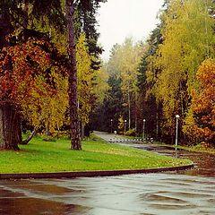 """фото """"Autumn 2000"""""""