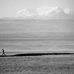 "фото ""Тибетский пешеход"""