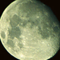 "фото ""Nocturna"""