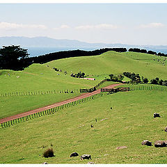 """photo """"The green hills of the Middle Earth"""""""