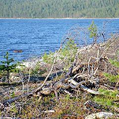 "photo ""Karelian beach"""