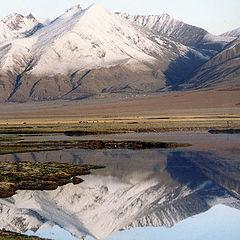 """фото """"В горах Тибета #3"""""""