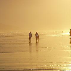 "фото ""sun like witness 2"""