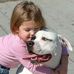 """фото """"Я люблю мою собачку"""""""