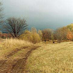 """фото """"Осенние зарисовки #9"""""""