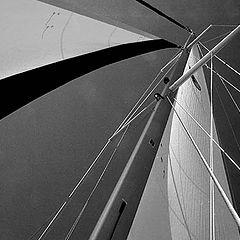 """фото """"Sails"""""""