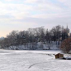 """фото """"Зимний день под Москвой"""""""