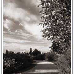 "photo ""The park`s path"""