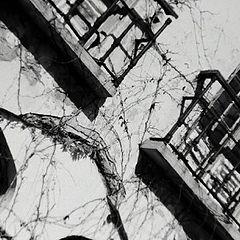 "photo ""old windows"""