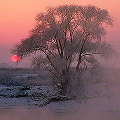 """фото """"Дыхание зимней реки"""""""