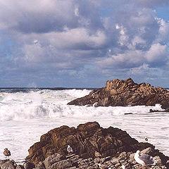 """photo """"seascape"""""""
